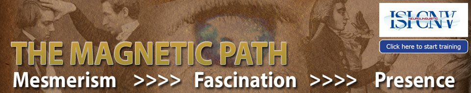 Magnetic path banner