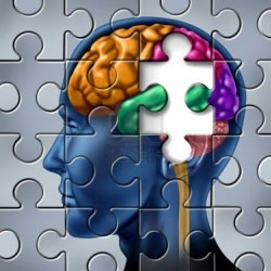 Mind in jigsaw